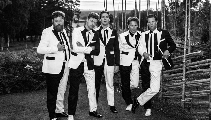 The Hives (photo: Göran Broberg)